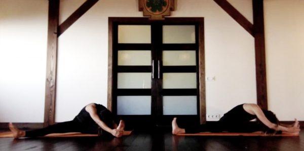 Clase Hatha Vinyasa – Especial apertura de cadera