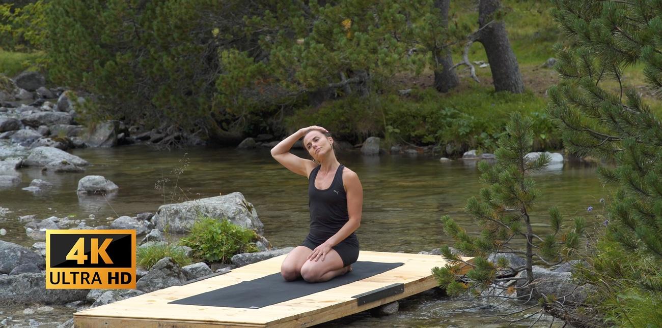 Yoga online 225ii